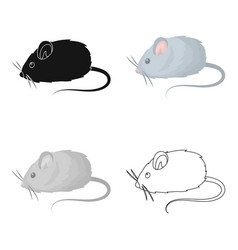 mouse toypet shop single icon in cartoon style vector image