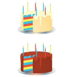 Cream and chocolate rainbow birthday party cakes vector