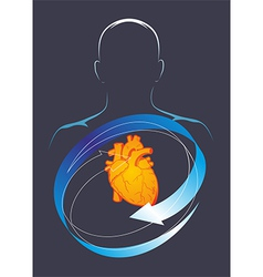 Health of their hart vector image