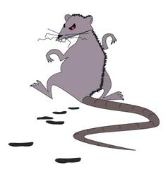 crappy rat vector image