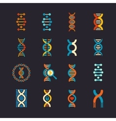 DNA genetic flat icons set vector image