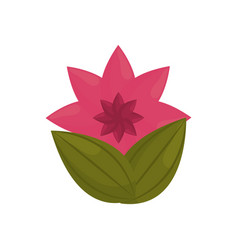 Flower petal bud with leaves vector