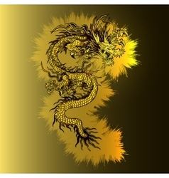 Chinese golden dragon on a luminous gold vector