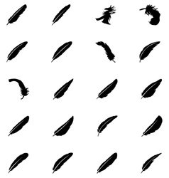 Feathers solid icons 6 vector