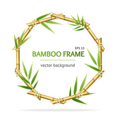 realistic 3d detailed bamboo shoots circle frame vector image