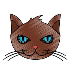 color pencil cartoon front view face cat animal vector image
