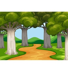 Scene with trees along the road vector image vector image