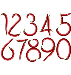 chili numbers vector image