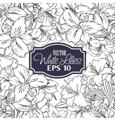 Background outline flowers vector image vector image