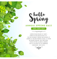 Hello spring leaves background vector