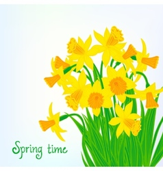Spring card background with daffodils vector image