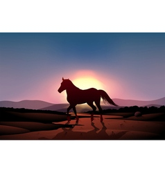 A sunset with a horse vector image