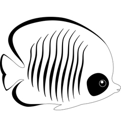 Silhouette of butterfly fish isolated on white vector