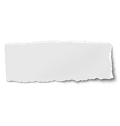 white oblong paper tear isolated on white vector image