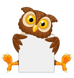 Cute owl cartoon holding blank sign vector