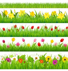 Flower Borders Set vector image