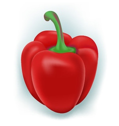 sweet pepper vector image