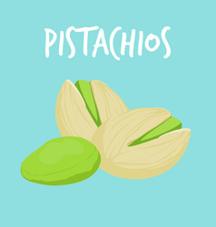 fresh pistachios on blue balckground vector image