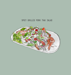 spicy grilled pork salad thai food hand drawn vector image