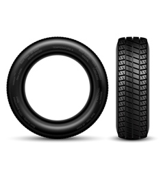Tire black vector