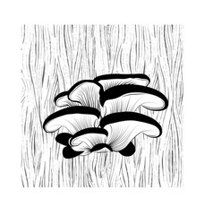 oyster mushrooms on the tree vector image