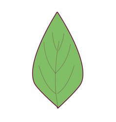 Natural leaf to ecology preservation icon vector