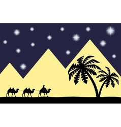 Man on the camel the pyramids vector