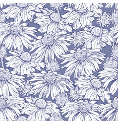 Seamless flower camomile vector