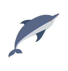 dolphin icon image vector image vector image