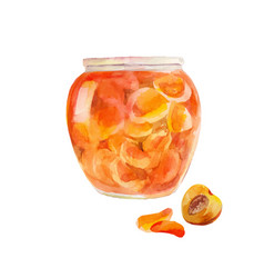Peach jam in the jar apricots cut in sweet syrup vector