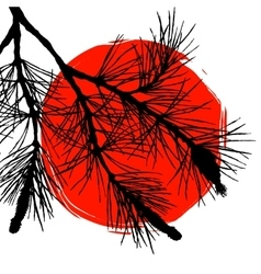 Pine tree branch and big red sun vector image vector image