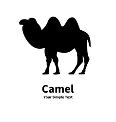 Silhouette of a Bactrian camel vector image