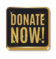 Gold glitter shiny donate now icon button with vector