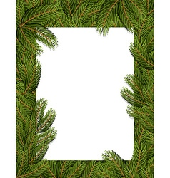 Frame spruce branch tree frame for text white vector