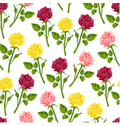Beautiful watercolor rose flower set handmade vector