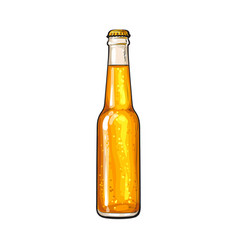 bottle of cold beer sketch vector image vector image