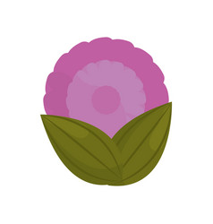 Purple flower bud with leaves vector