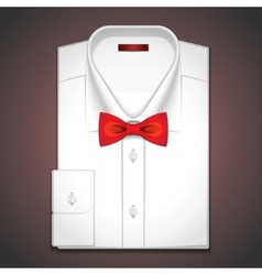 a classic white shirt vector image vector image