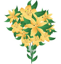 Bunch of lilies vector