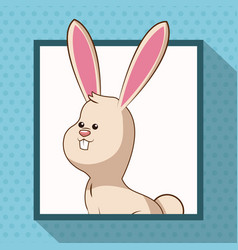 cute rabbit frame picture vector image