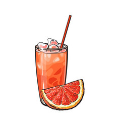 grapefruit quarter and glass of freshly squeezed vector image