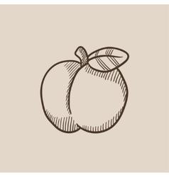 Apple sketch icon vector image vector image