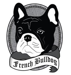 French Bulldog Portrait Isolated dog vector image