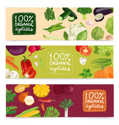 organic vegetables horizontal banners vector image vector image