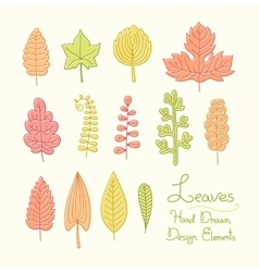 set of leaves in cartoon style vector image vector image