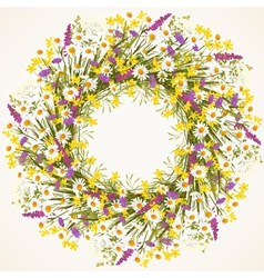 Wreath of wild flower vector image