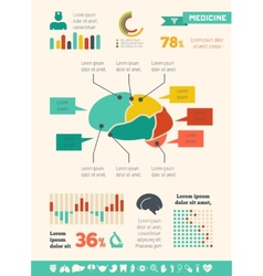 Medical infographic template vector