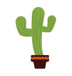 Green cactus icon vector