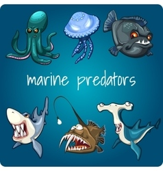 Shark piranha jellyfish and other vector