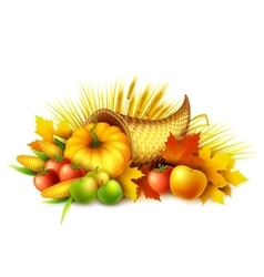 A thanksgiving cornucopia full of vector